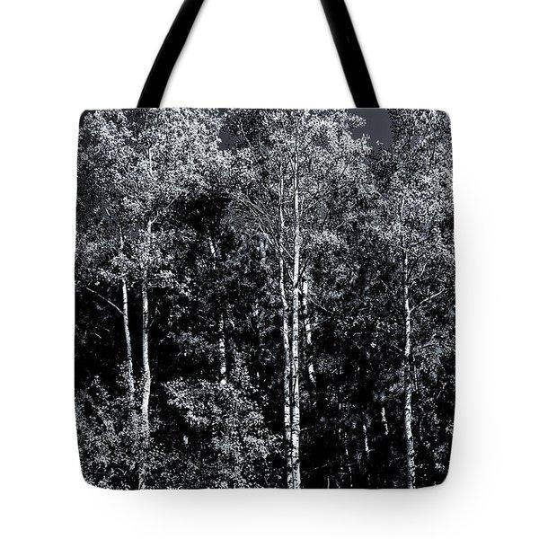Aspen Drama Tote Bag by Shelly Gunderson