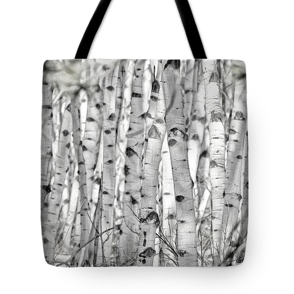 Aspen Forest Iv Tote Bag