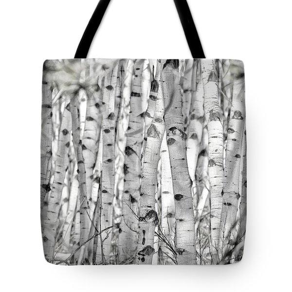 Aspen Forest Iv Tote Bag