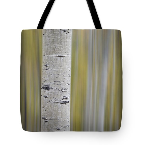 Tote Bag featuring the photograph Aspen by Gary Lengyel
