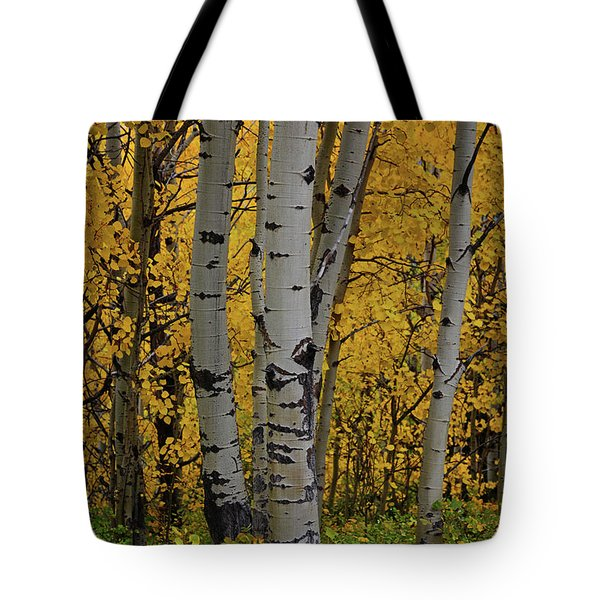 Aspen Golden Tote Bag