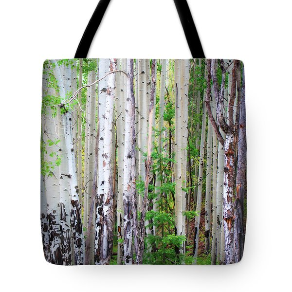 Aspen Grove In The White Mountains Tote Bag
