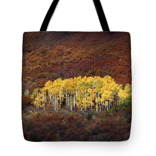 Aspen Grove Tote Bag by Rich Franco