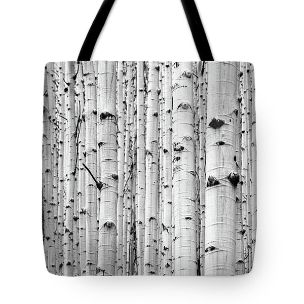 Tote Bag featuring the photograph Aspen Grove by Stephen Holst