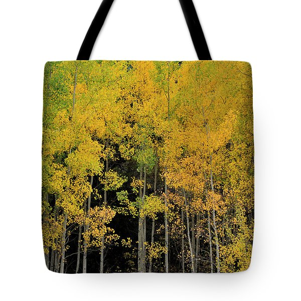 Tote Bag featuring the photograph Aspen Haven  by Ron Cline