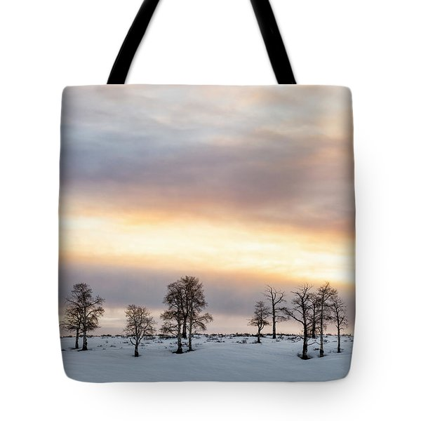 Aspen Hill At Sunset Tote Bag
