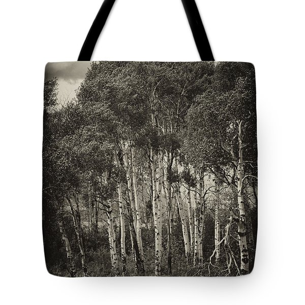 Tote Bag featuring the photograph Aspen by Hugh Smith