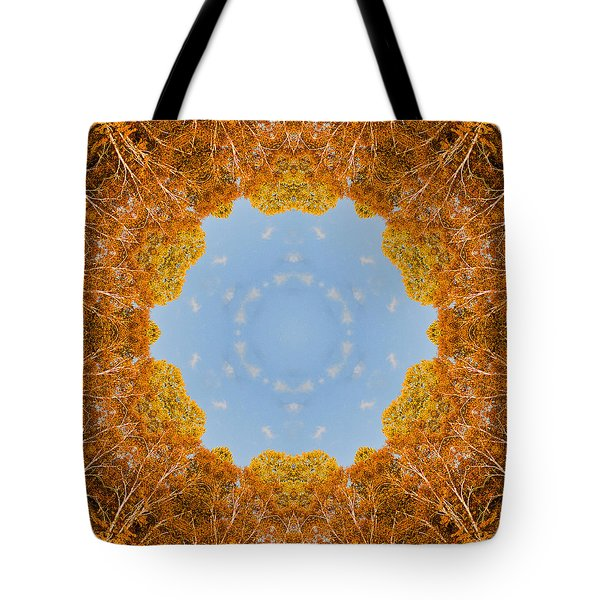 Tote Bag featuring the photograph Aspen Kaleidoscope by Bill Barber