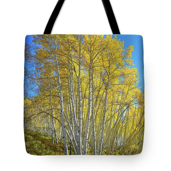 Tote Bag featuring the photograph Aspen Lane by Ray Mathis