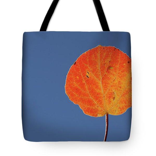Aspen Leaf 1 Tote Bag by Marie Leslie