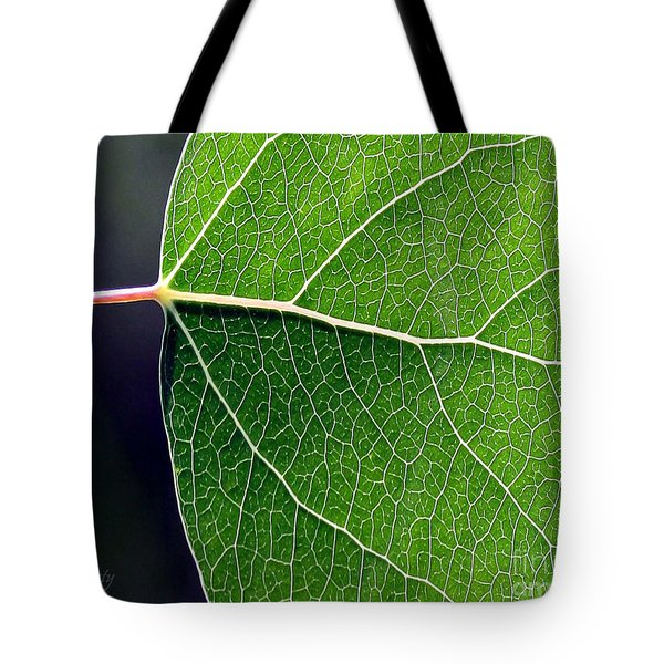 Aspen Leaf Veins Tote Bag