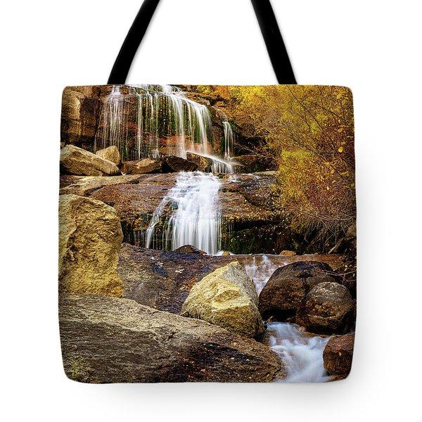Aspen-lined Waterfalls Tote Bag