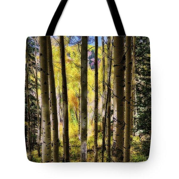 Aspen Mood - Autumn - Colorful Colorado Tote Bag by Jason Politte