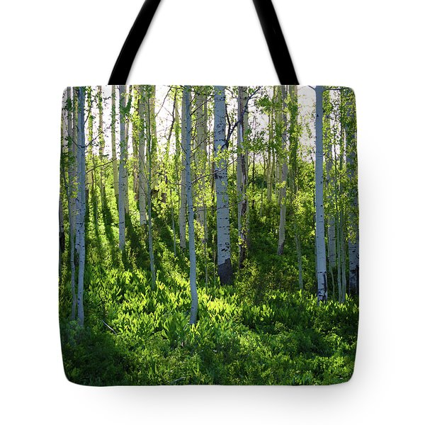 Aspen Morning 1 Tote Bag