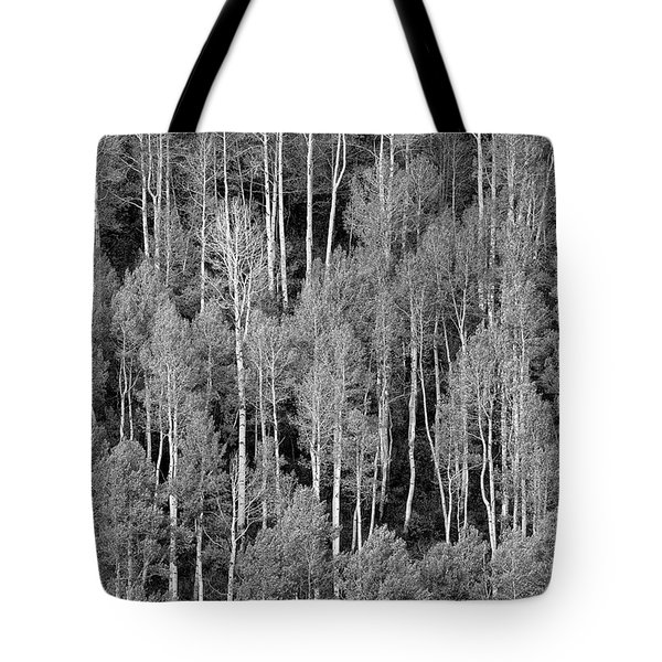 Aspen Pattern Tote Bag