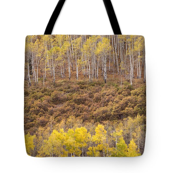 Aspen Patterns Tote Bag