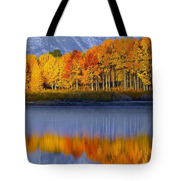 Aspen Reflection Tote Bag
