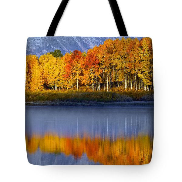 Aspen Reflection Tote Bag