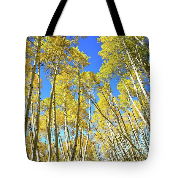 Tote Bag featuring the photograph Aspen Road by Ray Mathis