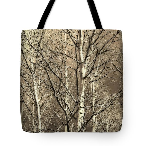 Aspen Sky White Mountains Arizona Tote Bag by Donna Greene