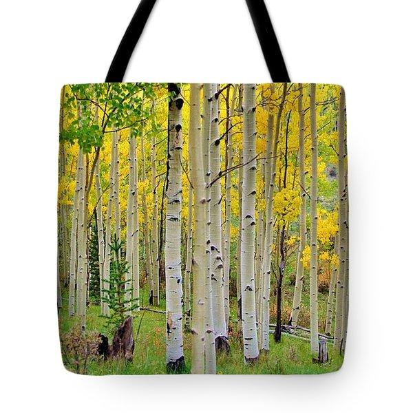 Aspen Slope Tote Bag by Ellen Heaverlo