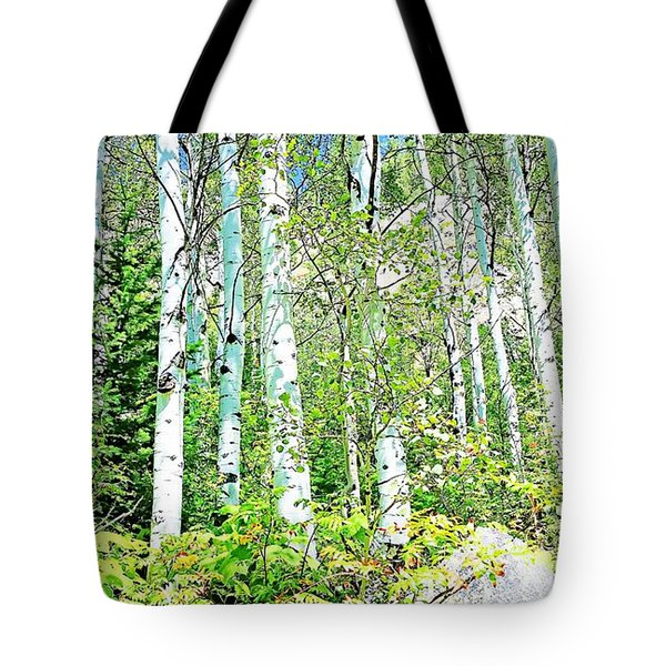Aspen Splender Steamboat Springs Tote Bag by Joseph Hendrix