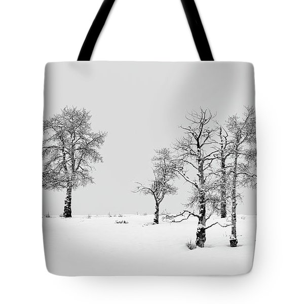 Aspen Tree Line-up Tote Bag