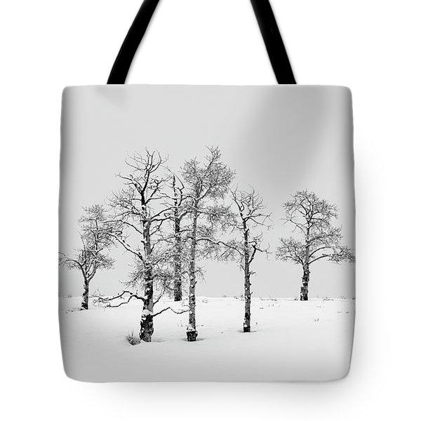 Aspen Tree Line-up Tote Bag