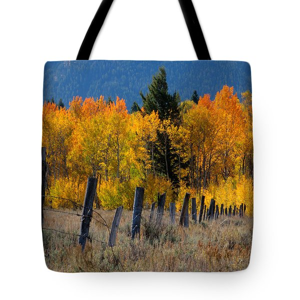 Aspens And Fence Tote Bag