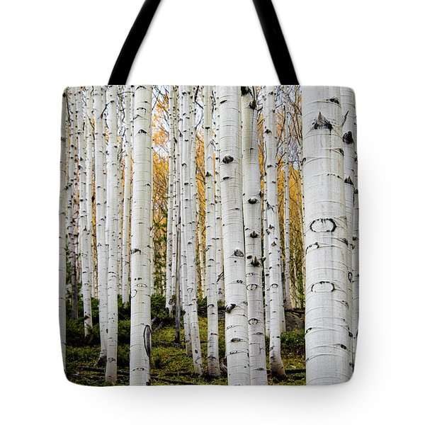 Aspens And Gold Tote Bag