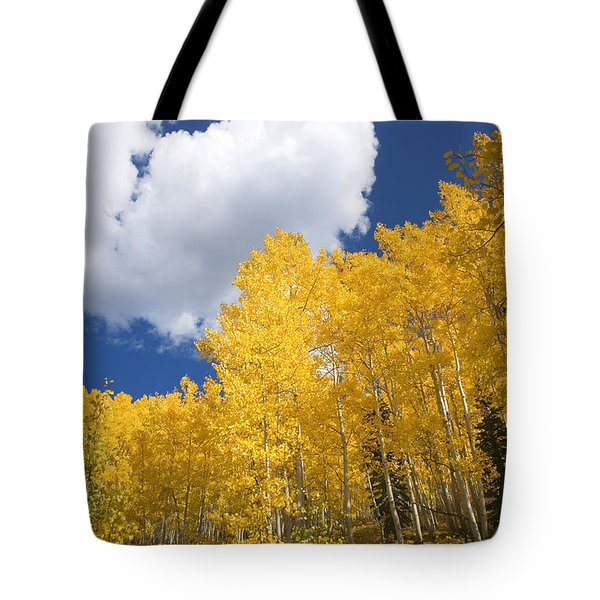 Aspens And Sky Tote Bag by Ron Dahlquist - Printscapes