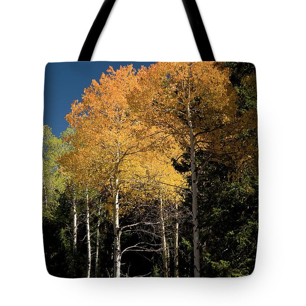 Tote Bag featuring the photograph Aspens And Sky by Steve Stuller