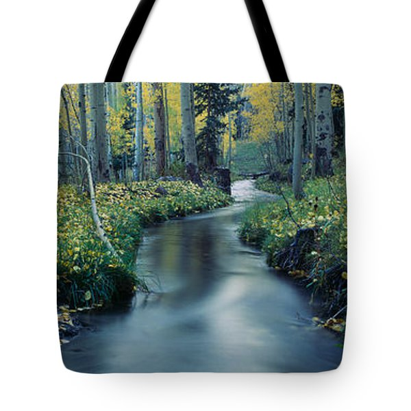 Aspens And Stream In Uncompahgre Tote Bag