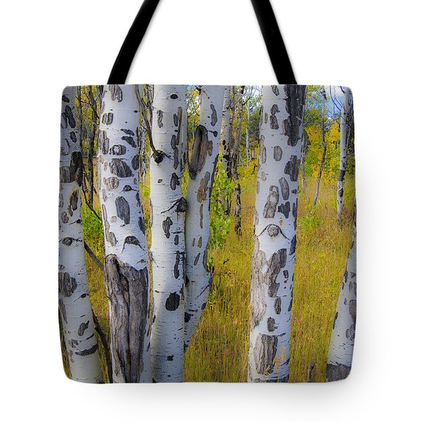 Tote Bag featuring the photograph Aspens by Gary Lengyel