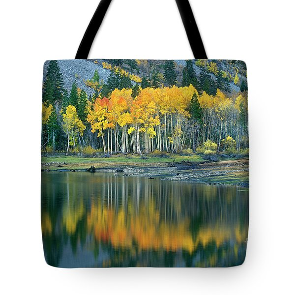 Tote Bag featuring the photograph Aspens In Fall Color Along Lundy Lake Eastern Sierras California by Dave Welling