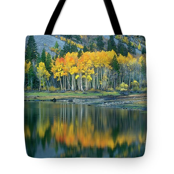 Aspens In Fall Color Along Lundy Lake Eastern Sierras California Tote Bag by Dave Welling