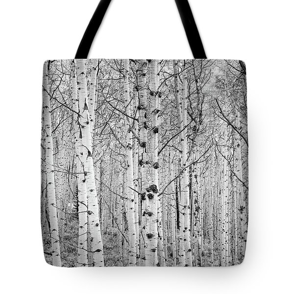 Aspens In High Key Tote Bag