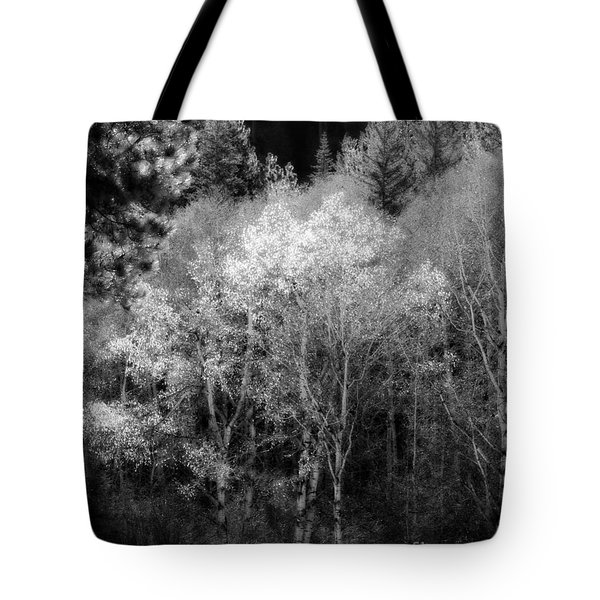 Aspens In Morning Light  For Traci Tote Bag