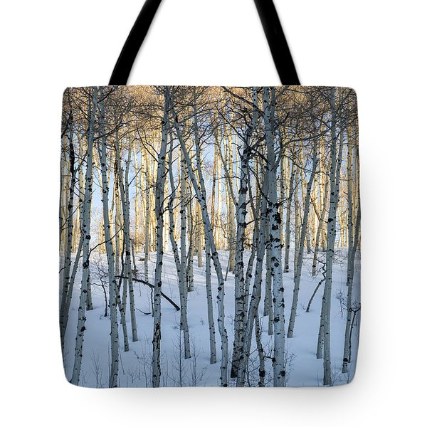 Aspens In Shadow And Light Tote Bag
