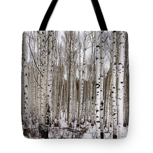 Aspens In Winter - Colorado Tote Bag