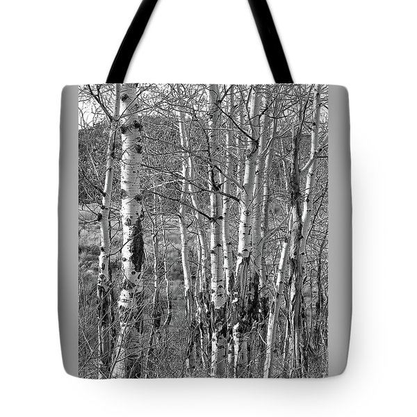 Aspens Tote Bag by Kathy Russell