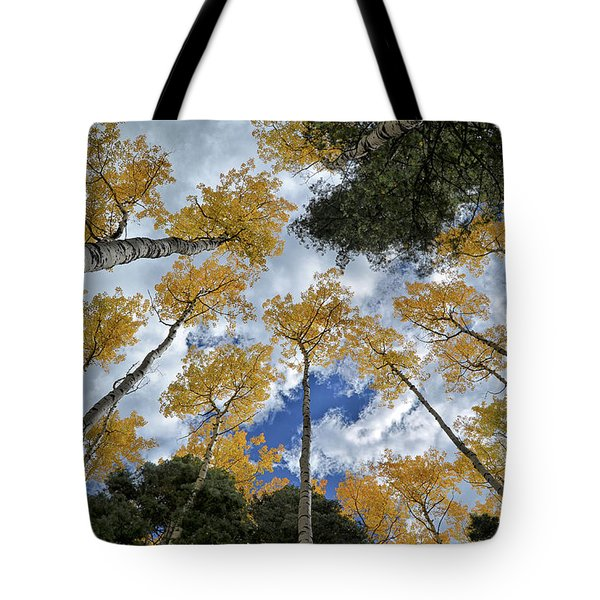 Aspens Reaching Tote Bag