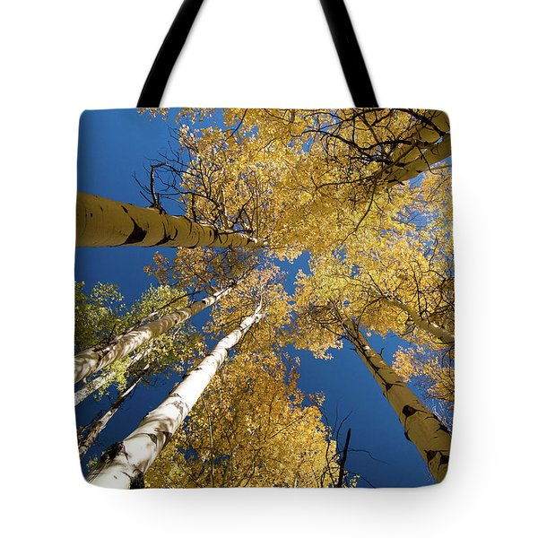 Tote Bag featuring the photograph Aspens Up by Steve Stuller