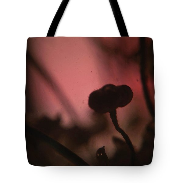 Aspiration With Ghost Tote Bag