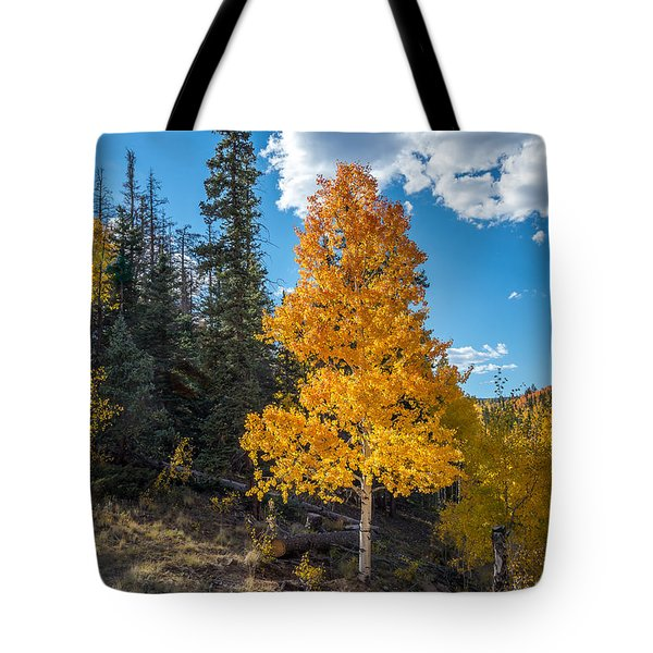 Aspen Tree In Fall Colors San Juan Mountains, Colorado. Tote Bag by John Brink