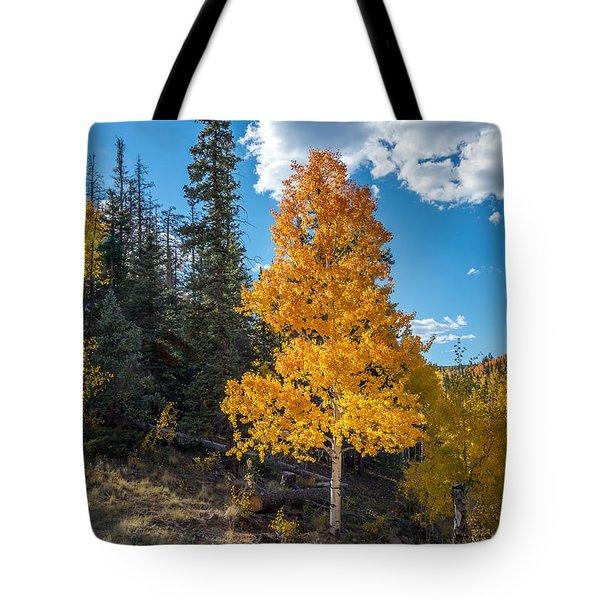 Aspen Tree In Fall Colors San Juan Mountains, Colorado. Tote Bag