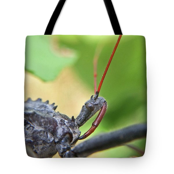 Tote Bag featuring the photograph Assassin Bug Macro by Robyn Stacey