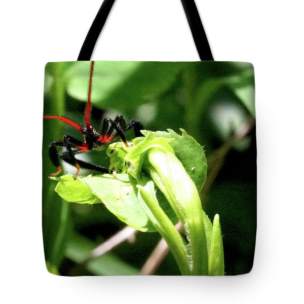 Assassin Bug Tote Bag by Meta Gatschenberger