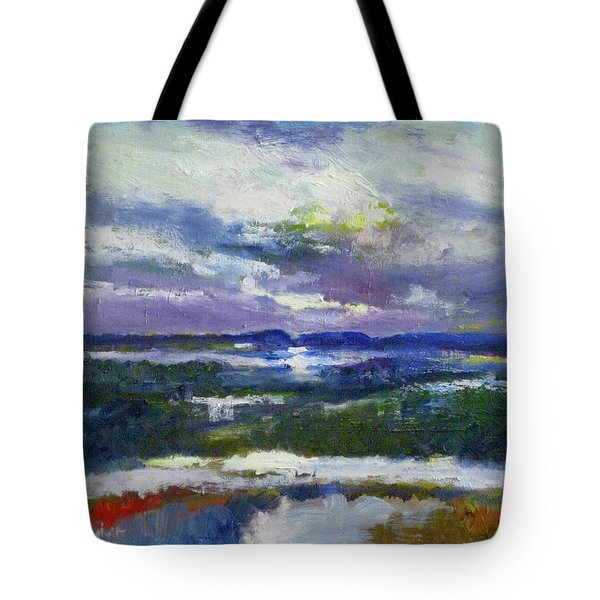 Assateague After The Strom Tote Bag
