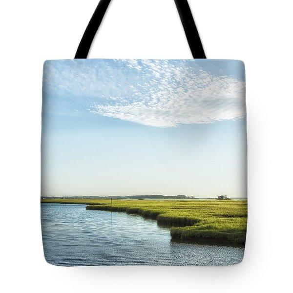 Assateague Island Tote Bag